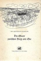 Die Stadt zwischen Berg und See St.Gallen