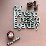 Holzschriftzug Our friendship.. (ca.10 cm)