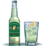 Soul Soda fruchtiger Engergydrink