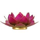 Lotus Licht Heilende Herzenskraft