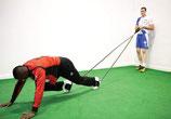 Potenciador doble de brazos o piernas