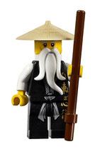LEGO 2507 | SENSEI WU