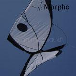 MORPHO KITE BY ALAIN MICQUIAUX