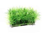 Bodendecker-Pflanzteppich