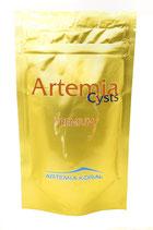 Koral Artemia