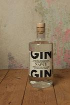 Napue Gin Finland 46,3%