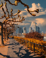 AUTUMN FFM BY OLIOPTIC-FOTO-PUZZLE 1.000 TEILE