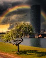 FFM RAINBOW BY OLIOPTIC-FOTO-PUZZLE 1.000 TEILE