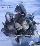 Z-008 Голубая лагуна / ブルーラグーン