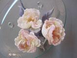 CS-003 Розы среднего уровня  Часть 2 / 中級の薔薇 パート2/ Intermediate roses Part 2