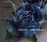 Z-011 Голубой Байю / ブルーバユー
