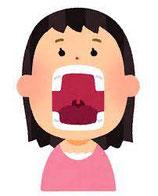 新生児の口腔機能評価セミナー