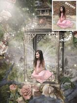 Flower Fairy Composite