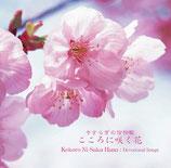 CD こころに咲く花 〜 やすらぎの信仰歌 〜