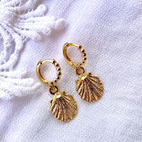 Small Shell Charms