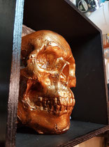 Skull-BOX C  /  20cm x 20cm x 10cm