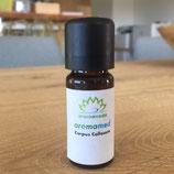 aromamed Corpus Callosum 10ml