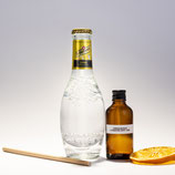 Tanqueray London Dry Gin & Tonic Original