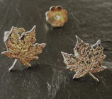 Ohrstecker Maple Leaf fein geädert