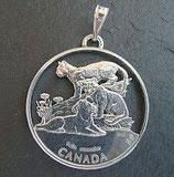 Kanada 'Puma - Kitten'
