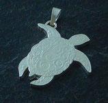 Fiji Turtle solo
