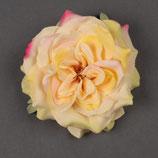 Blume Rose gelb mit pink