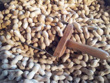 Erdnüsse 500 g