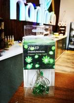 LED-Lichterkette Cannabis/Hanf