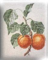 Rigeade - Les abricots