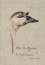 MTSA Oie de Guinée