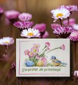 Rigeade - Surprises de printemps