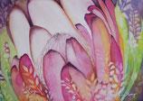 【211-0100】ハワイアンアート(Maui Protea)