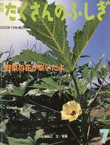 野菜の花が咲いたよ 北条純之 たくさんのふしぎ220号