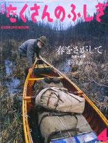 春をさがして  カヌーの旅  大竹英洋   たくさんのふしぎ253号