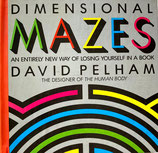 Dimensional Mazes  An Entirely New Way of Losing Yourself in a Book David Pelham pop-up