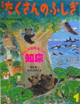 わたしの動物カレンダー 知床 たくさんのふしぎ262号