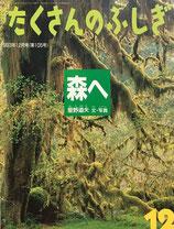 森へ 星野道夫 たくさんのふしぎ105号