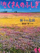 神々の花園 澤野新一朗 たくさんのふしぎ368号