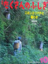 ニホンミツバチと暮らす 飯田辰彦 たくさんのふしぎ283号
