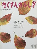 落ち葉 平山和子 たくさんのふしぎ200号