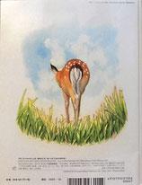 食べられて生きる草の話  たくさんのふしぎ367号