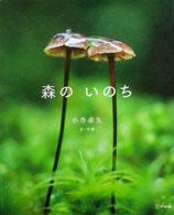 森のいのち 小寺卓也 文・写真