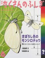 まぼろし色のモンシロチョウ 翅にかくされた進化のなぞ たくさんのふしぎ423号