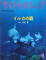 イルカの島 宇津孝 たくさんのふしぎ202号