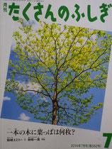 一本の木に葉っぱは何枚?  姉崎一馬   たくさんのふしぎ352号