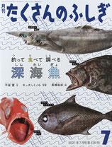 釣って 食べて 調べる 深海魚 たくさんのふしぎ436号