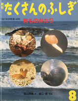 貝ものがたり たくさんのふしぎ149号