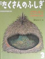 ニワシドリ   あずまやを作るふしぎな鳥   鈴木まもる   たくさんのふしぎ276号