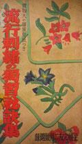 流行刺繍の独習秘訣集 主婦之友二月号附録 昭和15年