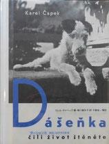 ダーシェンカ あるいは子犬の生活 カレル・チャペック